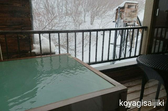 f:id:koyagi-saijiki:20180222184236j:image