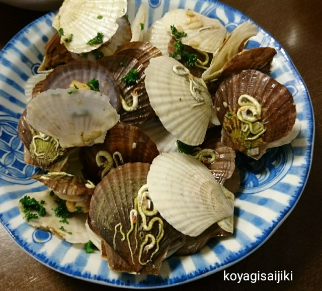 f:id:koyagi-saijiki:20180301233036j:image