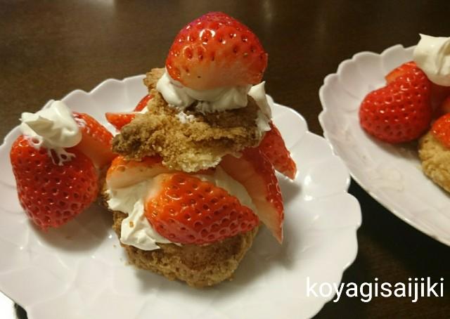 f:id:koyagi-saijiki:20180409204052j:image