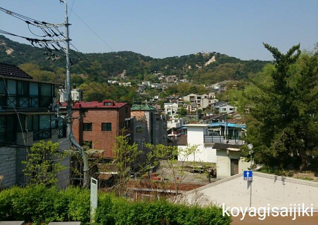 f:id:koyagi-saijiki:20180428151044j:image