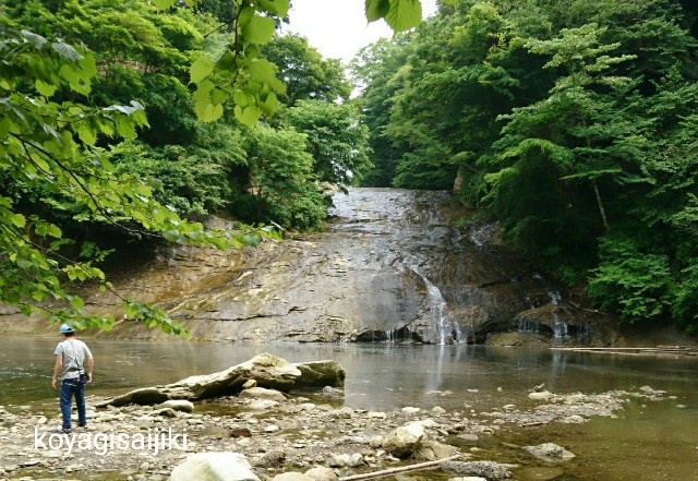 f:id:koyagi-saijiki:20180506193037j:image