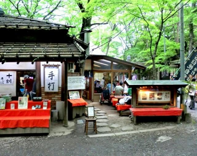 f:id:koyagi-saijiki:20180528135705j:image