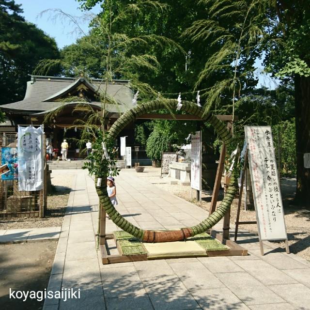 f:id:koyagi-saijiki:20180625161453j:image