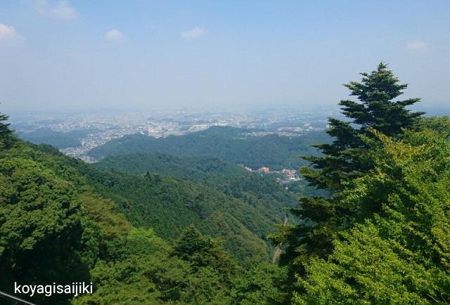 f:id:koyagi-saijiki:20180718132835j:image