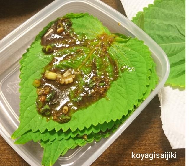 f:id:koyagi-saijiki:20180725104407j:image