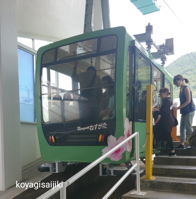 f:id:koyagi-saijiki:20180919225414j:image