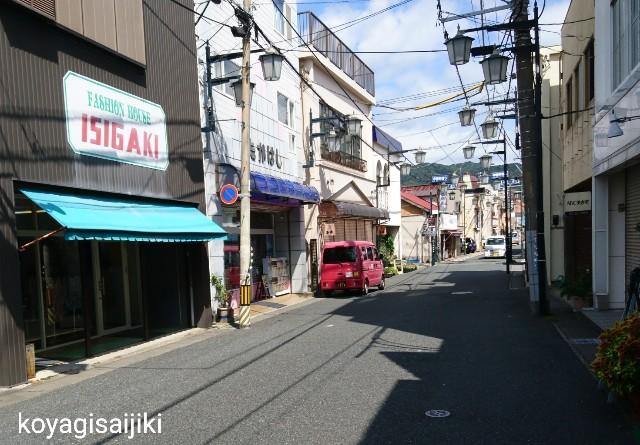 f:id:koyagi-saijiki:20180921232638j:image