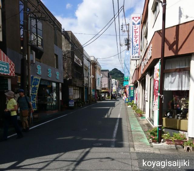 f:id:koyagi-saijiki:20180921232733j:image