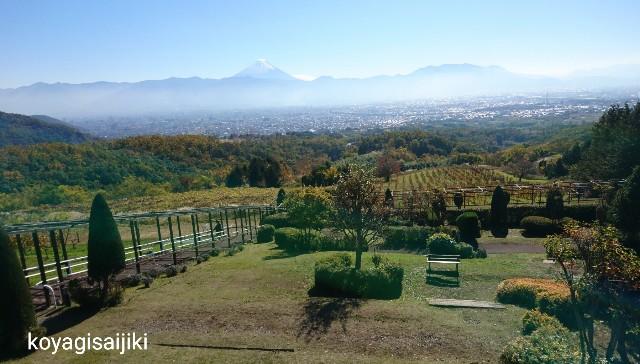 f:id:koyagi-saijiki:20181117133043j:image