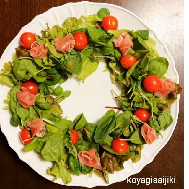 f:id:koyagi-saijiki:20181226233533j:image