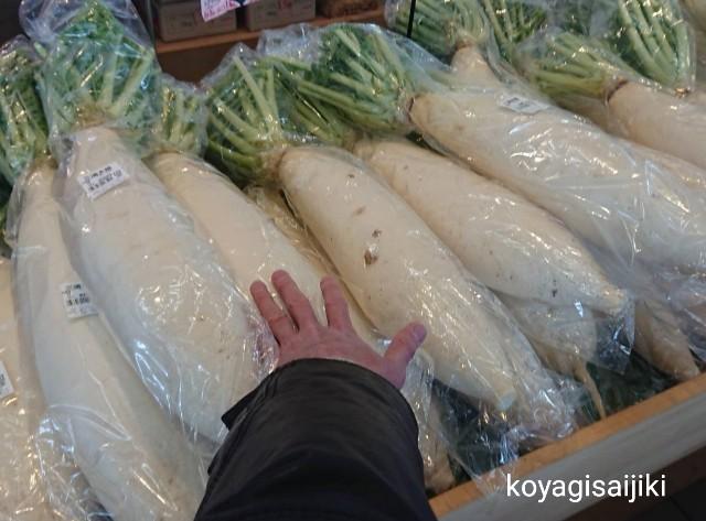 f:id:koyagi-saijiki:20190304194529j:image