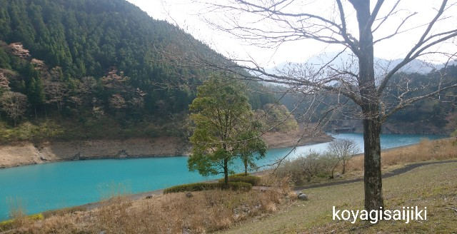 f:id:koyagi-saijiki:20190411230113j:image
