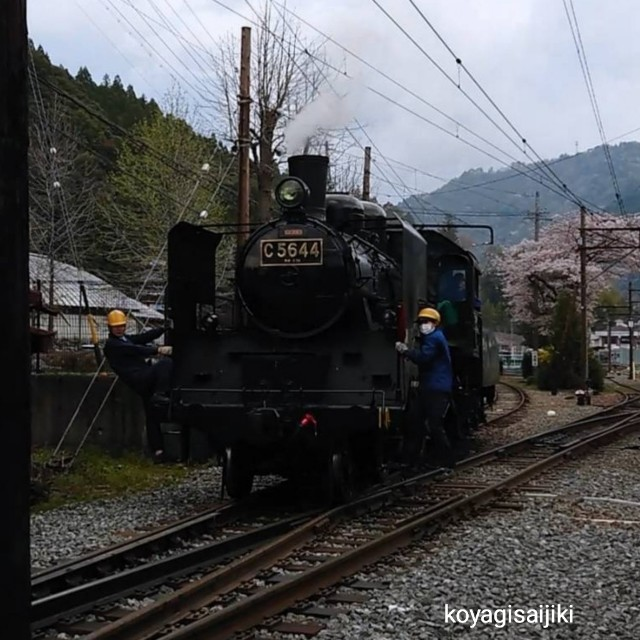 f:id:koyagi-saijiki:20190416174340j:image