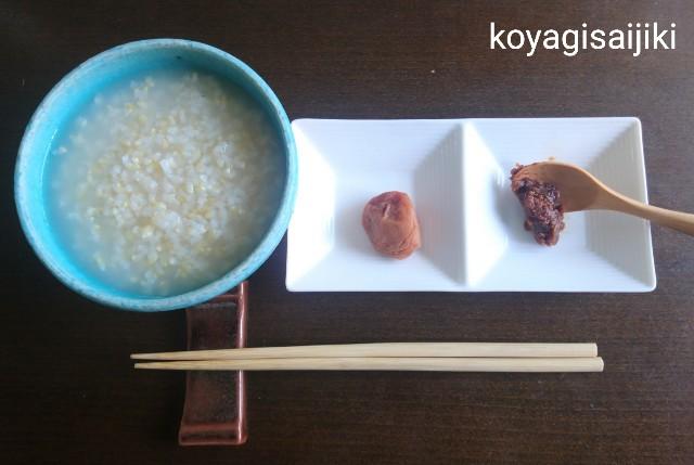 f:id:koyagi-saijiki:20190523133013j:image
