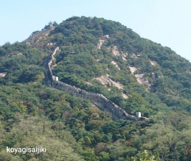 f:id:koyagi-saijiki:20190602234025j:image