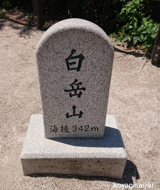f:id:koyagi-saijiki:20190604184655j:image
