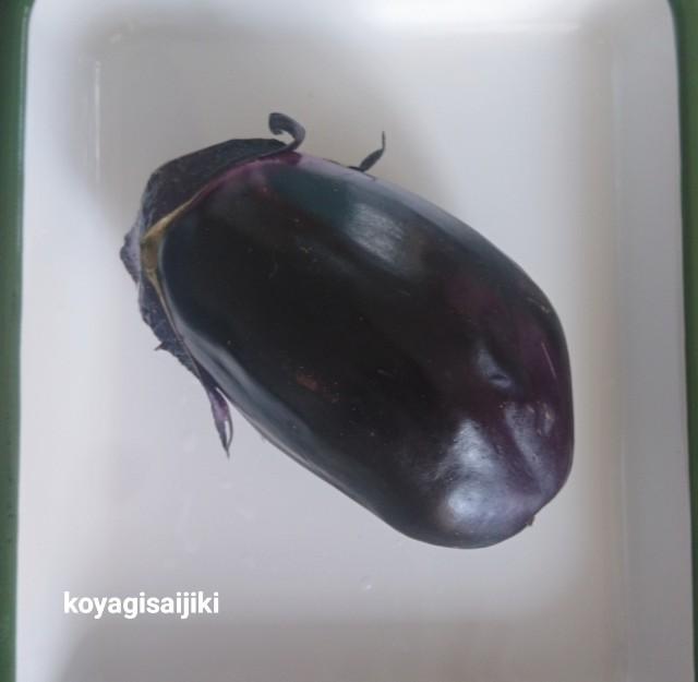 f:id:koyagi-saijiki:20190613094550j:image