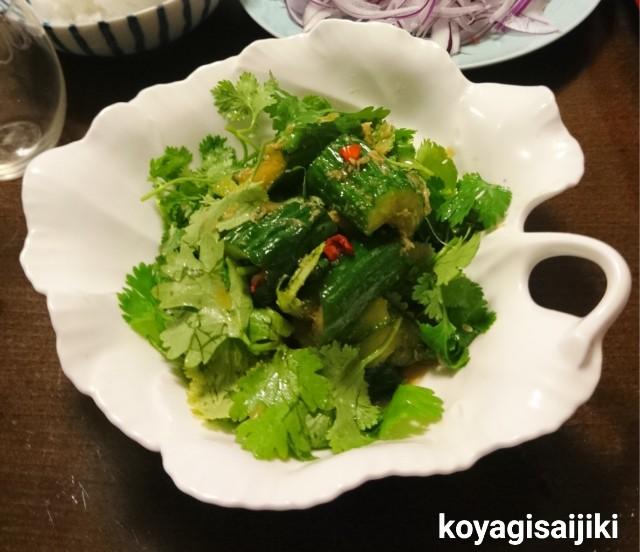 f:id:koyagi-saijiki:20190722235000j:image