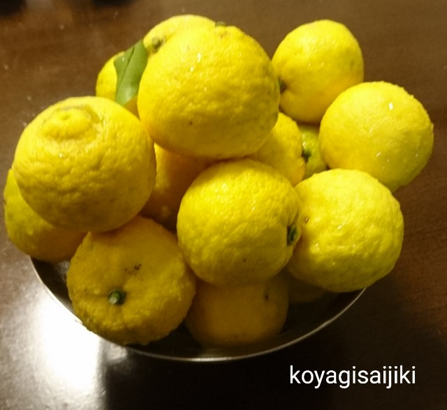 f:id:koyagi-saijiki:20191222132409j:image