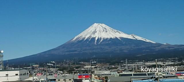 f:id:koyagi-saijiki:20200105121320j:image