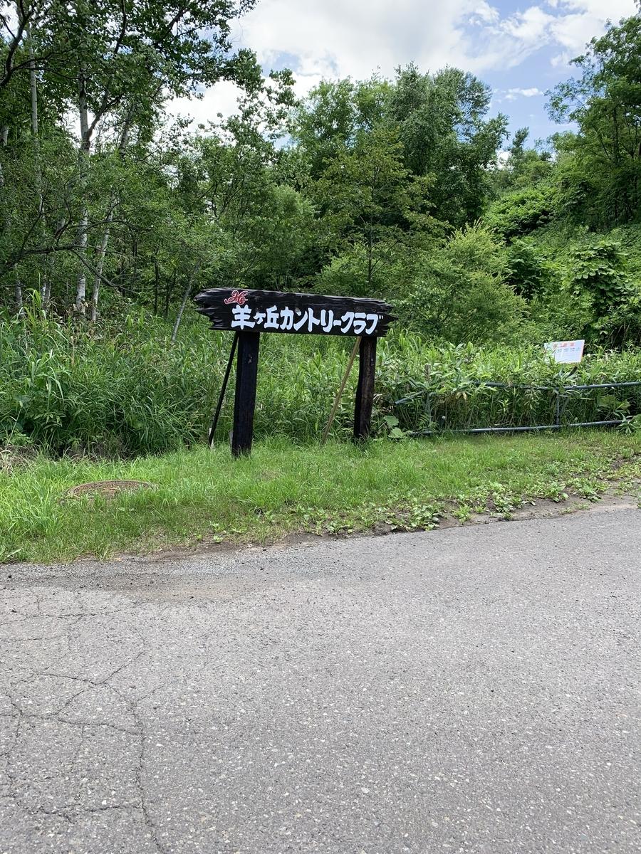 f:id:koyo_nishijima:20200515230406j:plain