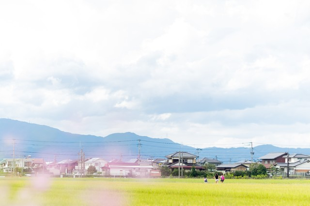 f:id:koyukiusagi:20190702111021j:plain