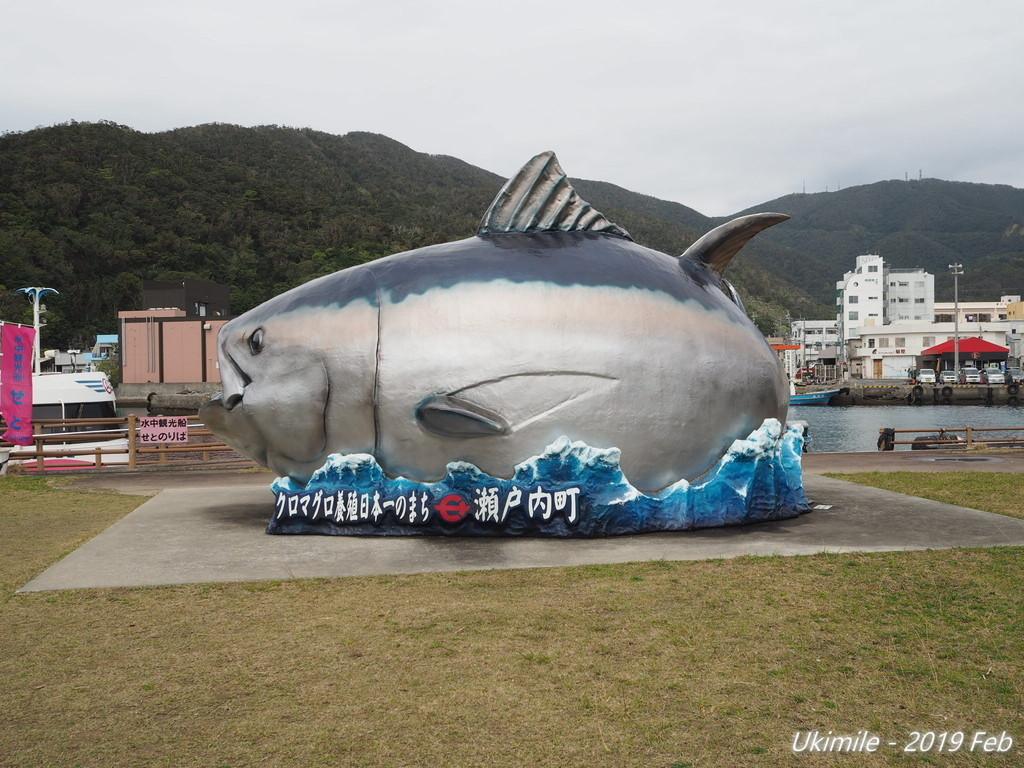 f:id:koyukizou:20190210131832j:plain