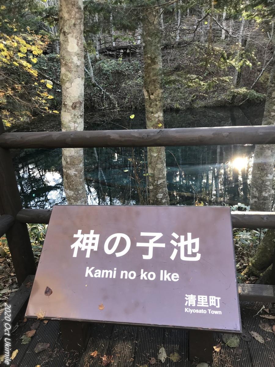 f:id:koyukizou:20201024142020j:plain