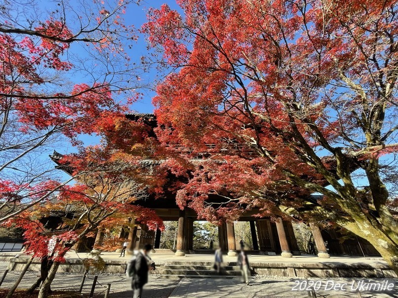 f:id:koyukizou:20201220201228j:plain