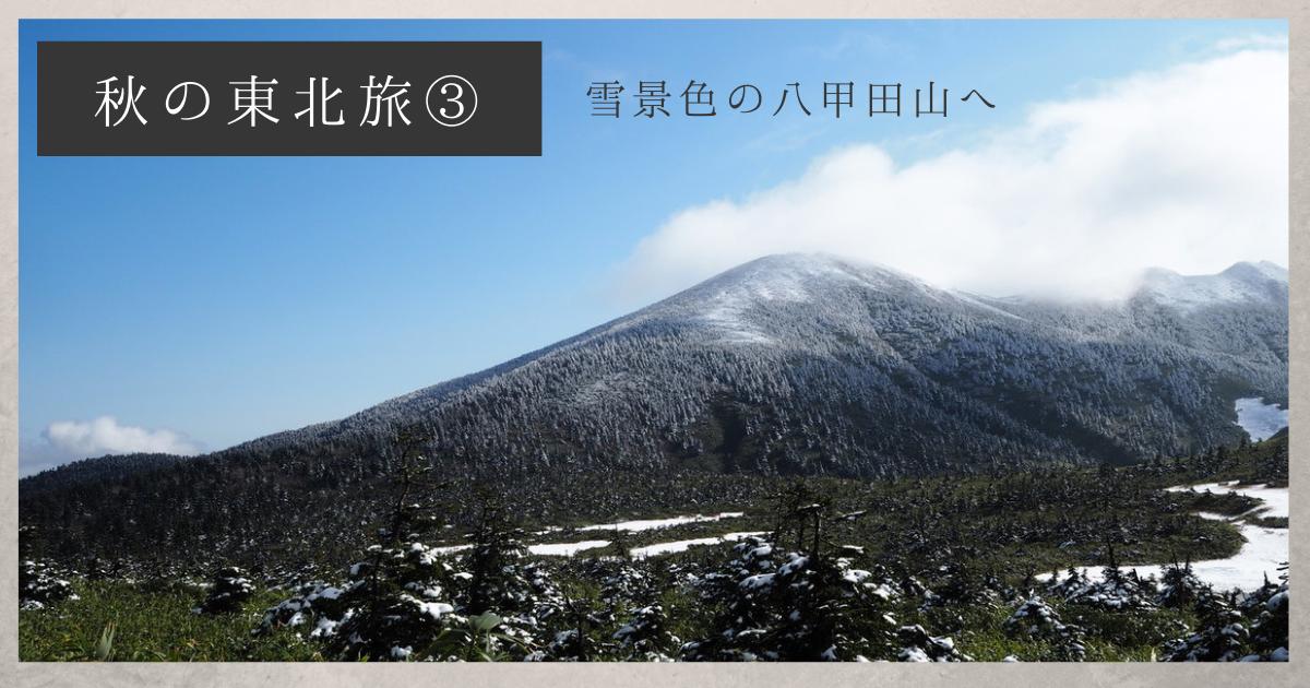 f:id:koyukizou:20210224084040p:plain
