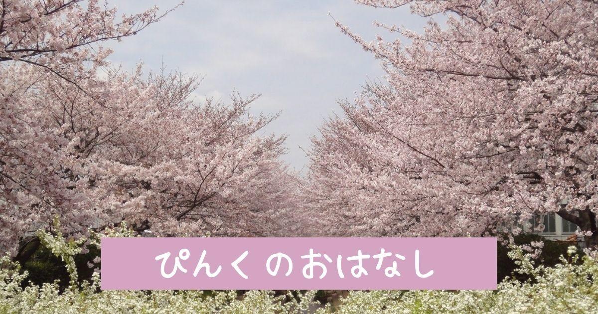f:id:koyukizou:20210321141435j:plain