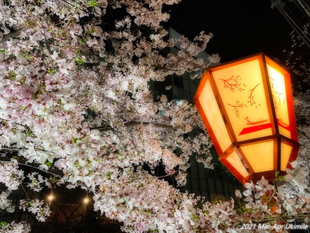 f:id:koyukizou:20210331192041j:plain