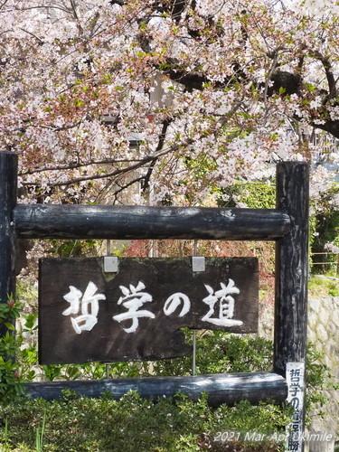 f:id:koyukizou:20210401111721j:plain