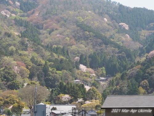 f:id:koyukizou:20210401113349j:plain
