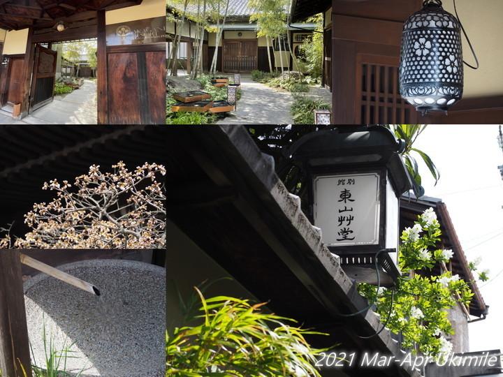 f:id:koyukizou:20210411174628j:plain