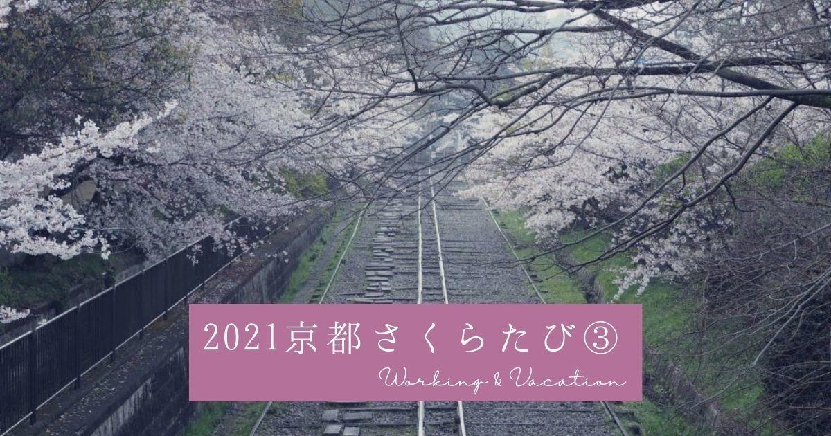 f:id:koyukizou:20210418192137j:plain