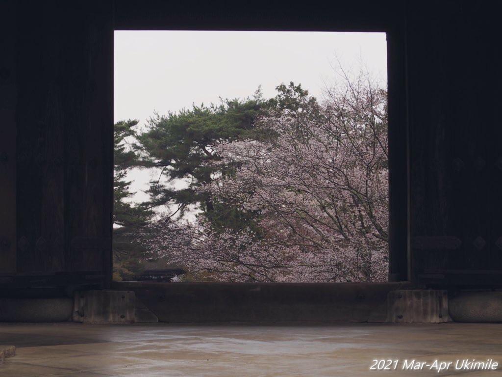 f:id:koyukizou:20210419075813j:plain