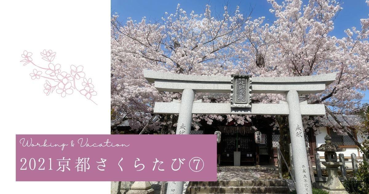 f:id:koyukizou:20210429180607j:plain