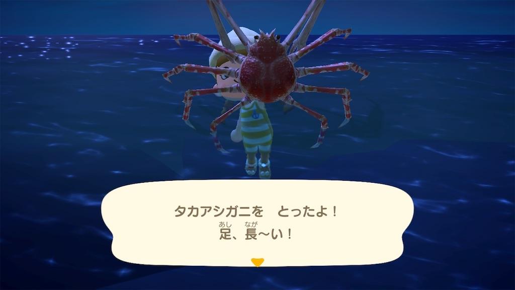 f:id:kozika-san:20210304180525j:image