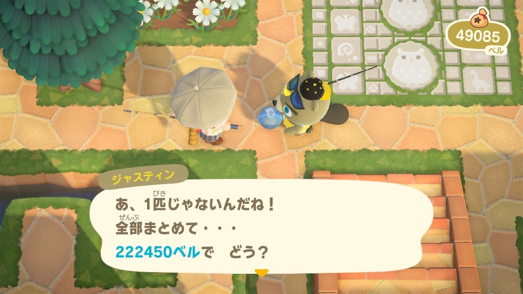 f:id:kozika-san:20210423212644j:image