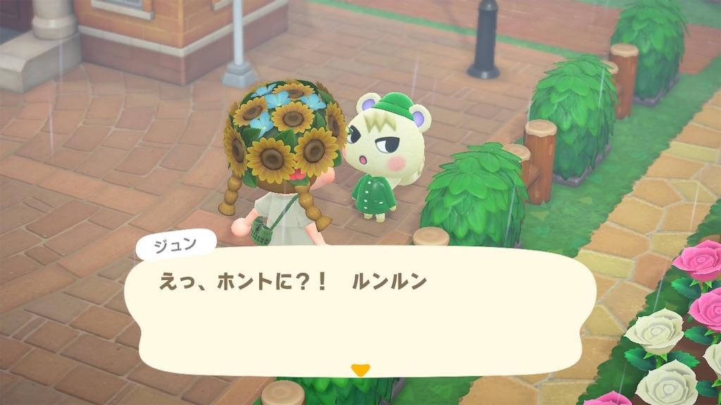 f:id:kozika-san:20210621173530j:image