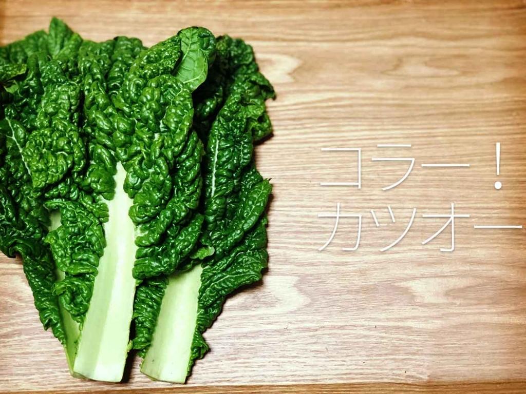 f:id:kozonoayumi2018:20180301014733j:plain