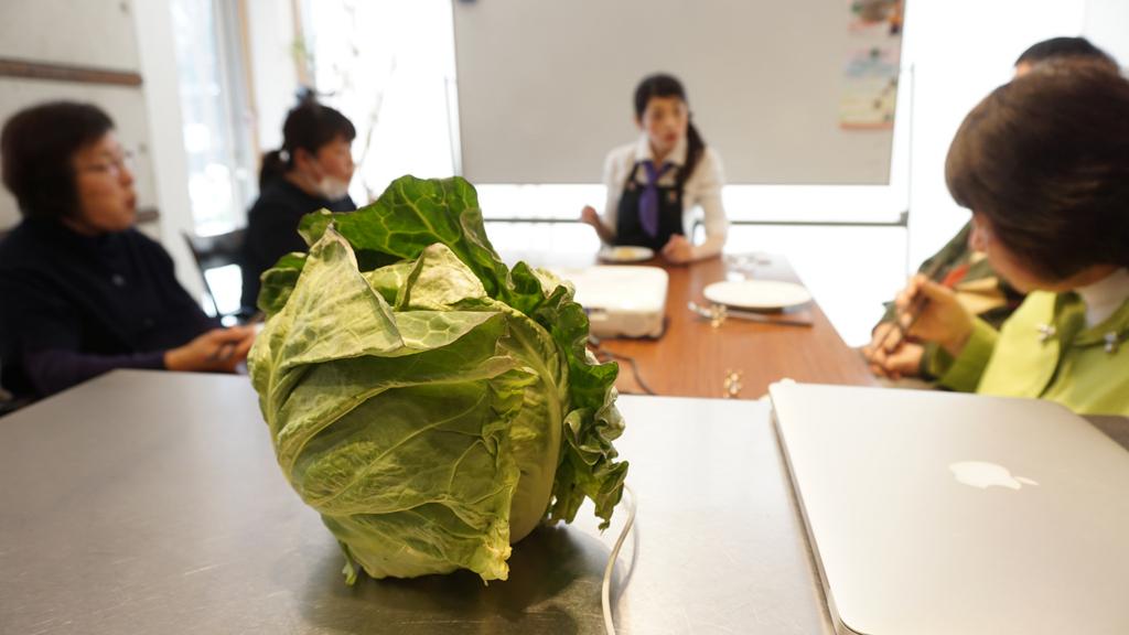 野菜教室:キャベツ【適材適食】小園亜由美(管理栄養士・野菜ソムリエ上級プロ)