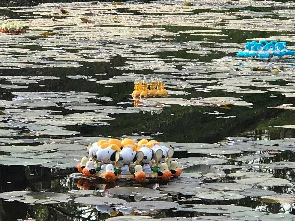 有名なわんちゃん【適材適食】小園亜由美(管理栄養士・野菜ソムリエ上級プロ)
