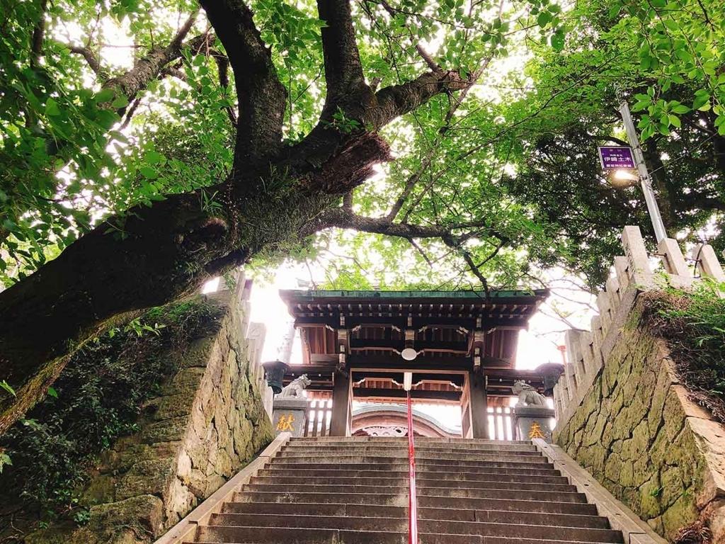 愛宕の山の一番上に愛宕神社はあります。もうひと頑張り。【適材適食】小園亜由美(管理栄養士・野菜ソムリエ上級プロ)