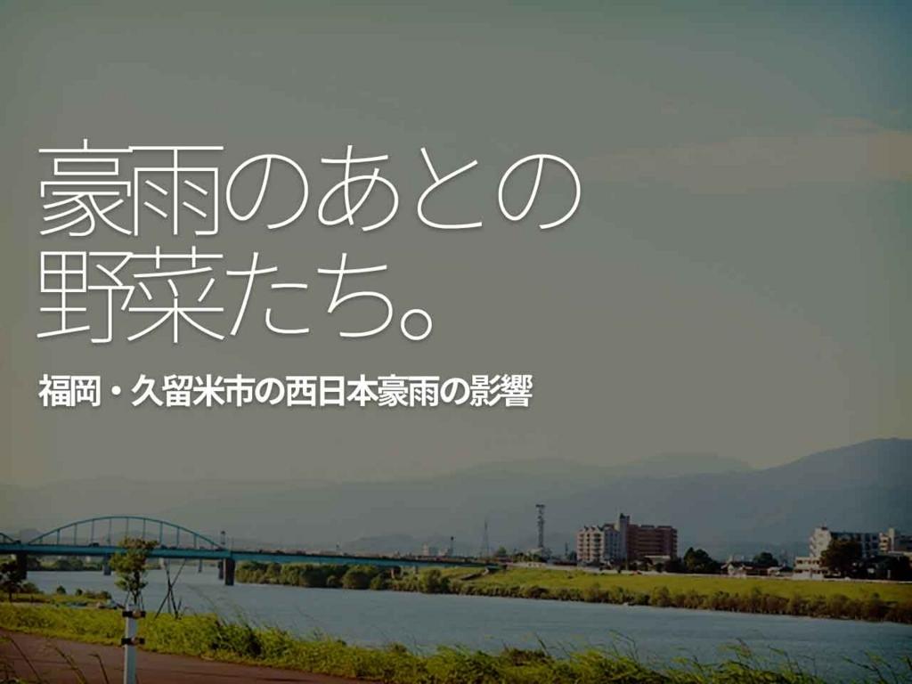 「豪雨のあとの野菜たち。」- 福岡 久留米市の西日本豪雨の影響 -【適材適食】小園亜由美(管理栄養士・野菜ソムリエ上級プロ)