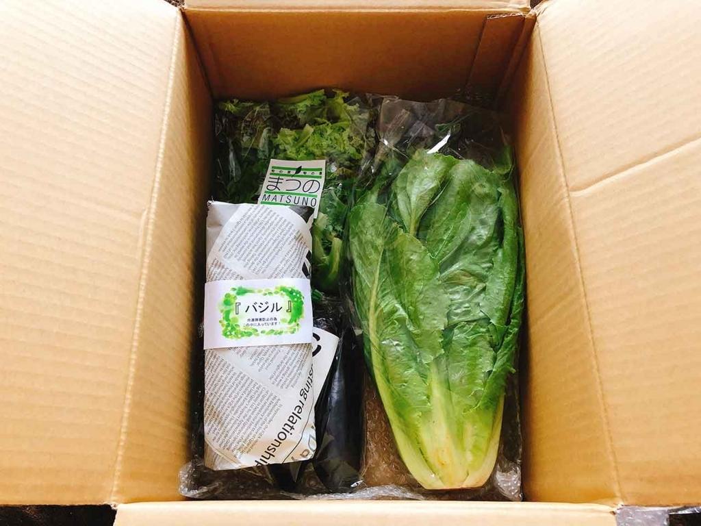 まつの幸せ野菜ボックスには旬の野菜がいっぱい!【適材適食】小園亜由美(管理栄養士・野菜ソムリエ上級プロ)