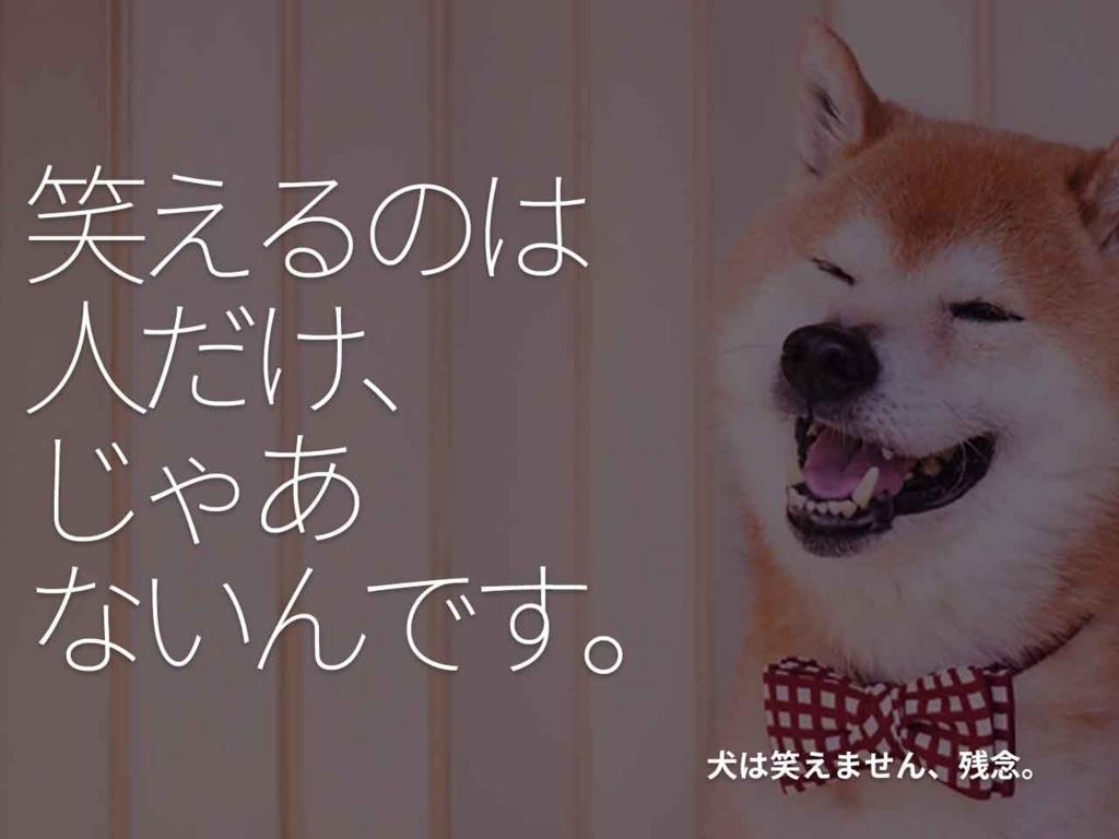 「笑えるのは人だけ、じゃあないんです。」犬は笑えません、残念。【適材適食】小園亜由美(管理栄養士・野菜ソムリエ上級プロ)