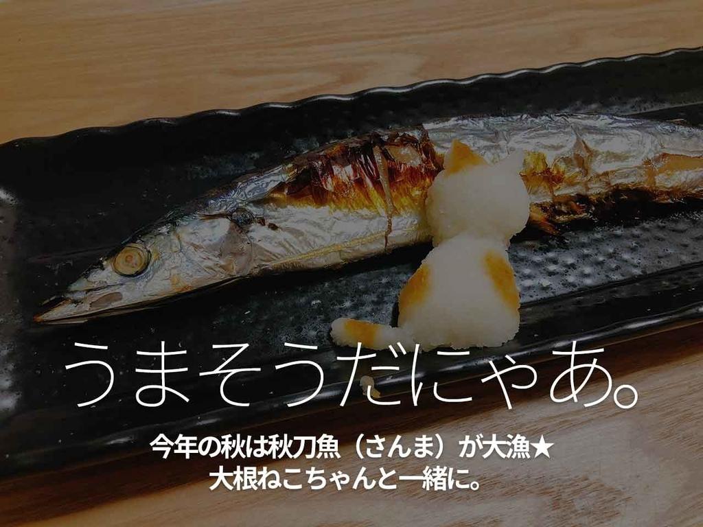 「うまそうだにゃあ。」今年の秋は秋刀魚(さんま)が大漁★大根ねこちゃんと一緒に。【適材適食】小園亜由美(管理栄養士・野菜ソムリエ上級プロ)