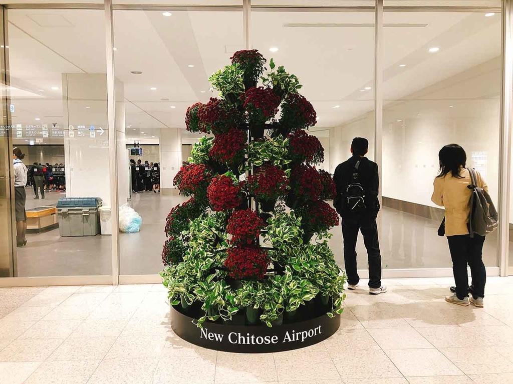 新千歳空港【適材適食】小園亜由美(管理栄養士・野菜ソムリエ上級プロ)
